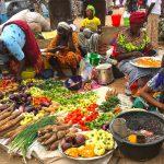 Tanji Fischmarkt Gambia